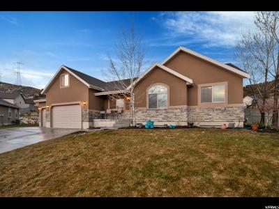 Eagle Mountain Single Family Home For Sale: 3097 E Lookout Cir