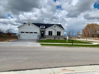 Spanish Fork Single Family Home For Sale: 787 N Spring Ln