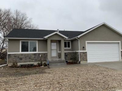American Fork Single Family Home For Sale: 241 E 140 S