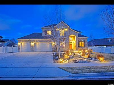South Jordan Single Family Home For Sale: 3364 W Canyon Meadow S #433