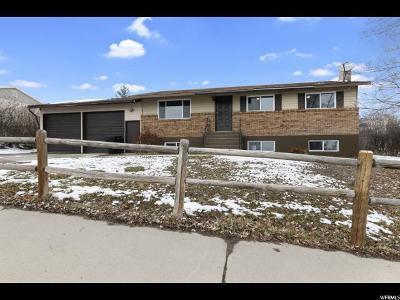 Payson Single Family Home For Sale: 767 Arrowhead Trl