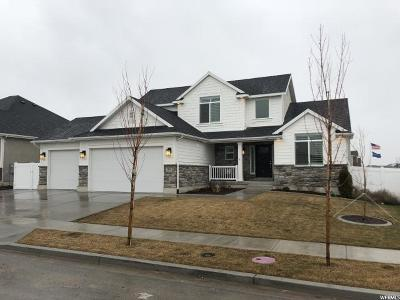 Lehi Single Family Home For Sale: 2476 N Circle C Way