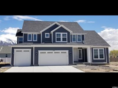 American Fork Single Family Home For Sale: 724 N 780 W #102
