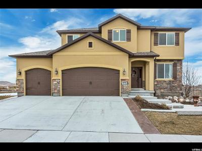 Eagle Mountain Single Family Home For Sale: 8876 N Stonebridge Ln E