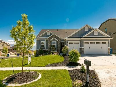 Saratoga Springs Single Family Home For Sale: 2832 S Fox Pointe Dr