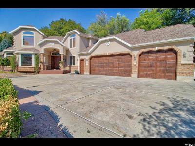 Orem Single Family Home Backup: 544 S Carterville Rd