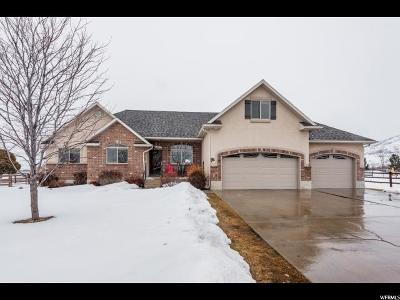 Heber City Single Family Home For Sale: 3035 S Big Hollow Rd