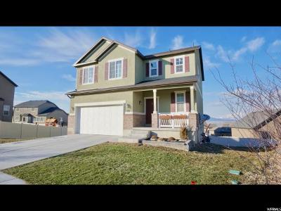 Saratoga Springs Single Family Home For Sale: 376 W Kit Fox Dr