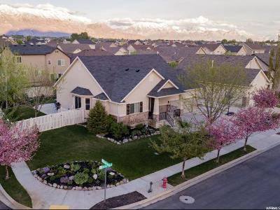 Lehi Single Family Home For Sale: 2344 N 2450 W