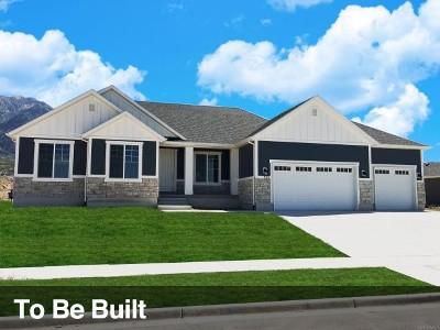 Springville Single Family Home For Sale: 491 S 1950 E #29