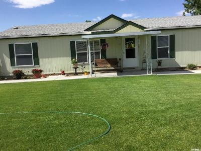 Emery County Single Family Home For Sale: 585 N Canyon Vw E