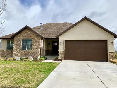 Eagle Mountain Single Family Home For Sale: 3485 E Jacobs Way