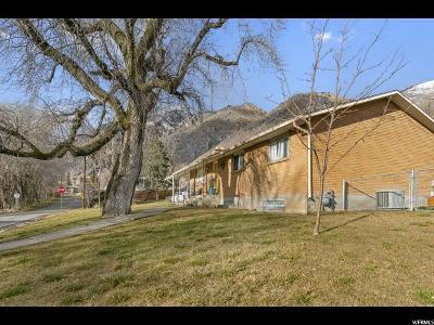 Springville Single Family Home For Sale: 386 N 800 E