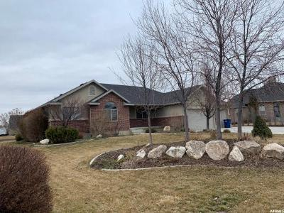 Kaysville Single Family Home For Sale: 740 W Mindy Cir S