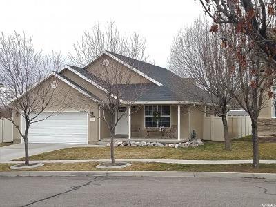 Saratoga Springs Single Family Home For Sale: 417 Cinnamon Cir