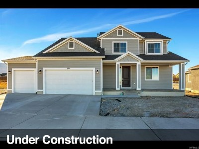 Stansbury Park Single Family Home For Sale: 6495 N Flat Top Dr #307