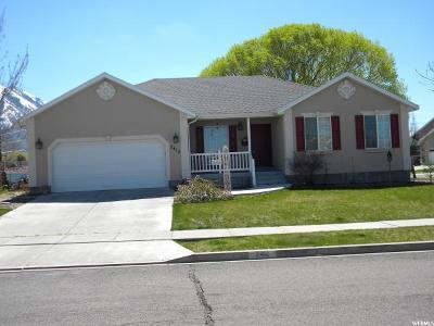 Spanish Fork Single Family Home For Sale: 2412 E 1035 S