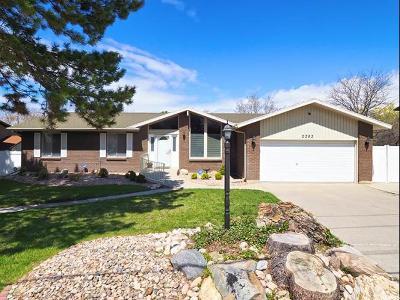 Sandy Single Family Home For Sale: 2283 E 9800 S