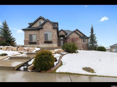 Salem Single Family Home For Sale: 488 E 960 S