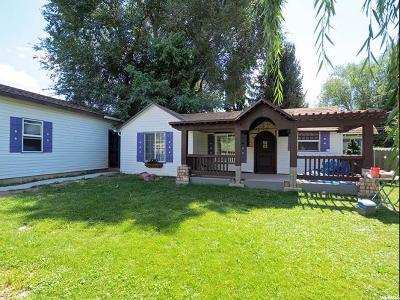 Alpine Single Family Home For Sale: 480 E 100 S