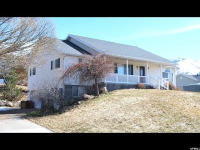 Millville Single Family Home For Sale: 170 N 250 E