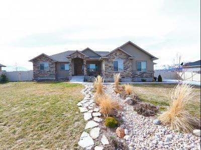 Grantsville Single Family Home For Sale: 578 E Coach Ln S