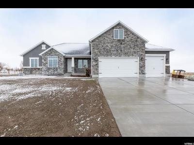 Erda Single Family Home For Sale: 765 Yates Springs Rd