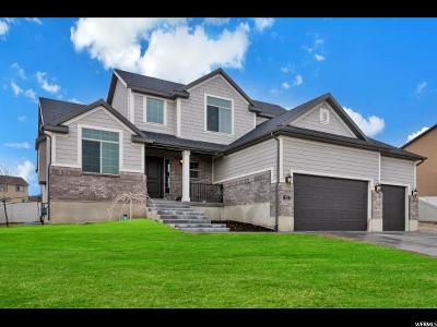 Saratoga Springs Single Family Home For Sale: 323 W Shadow Ridge Dr. S