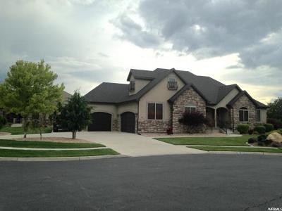 Spanish Fork Single Family Home For Sale: 387 N 1430 E