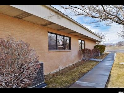 Commercial For Sale: 590 E 100 N #4