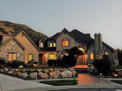 Draper Single Family Home For Sale: 14724 S Draper View Cv E