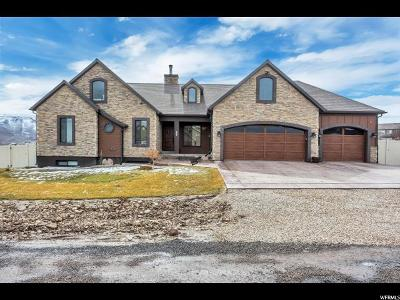 Herriman Single Family Home For Sale: 7083 W Gina Rd S