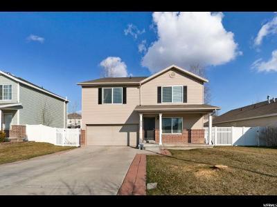 Spanish Fork Single Family Home For Sale: 353 Spanish Fields Dr