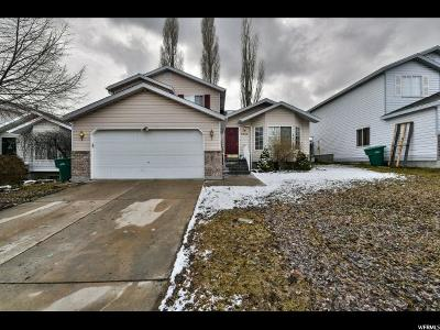 West Jordan Single Family Home For Sale: 5569 W Ticklegrass S