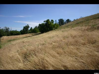 Providence Residential Lots & Land For Sale: 420 S 100 E