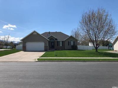 Smithfield Single Family Home For Sale: 144 E 520 N