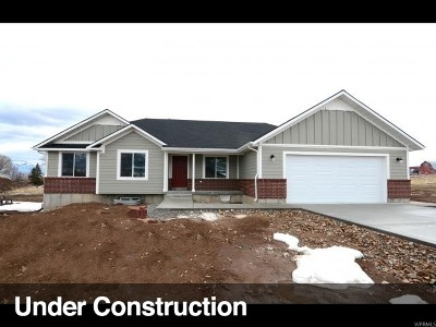 Wellsville Single Family Home For Sale: 846 S 50 W