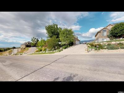 Tooele Single Family Home For Sale: 99 S Benchview Dr