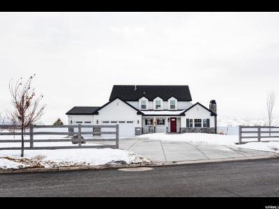 Heber City Single Family Home For Sale: 1260 E 400 S