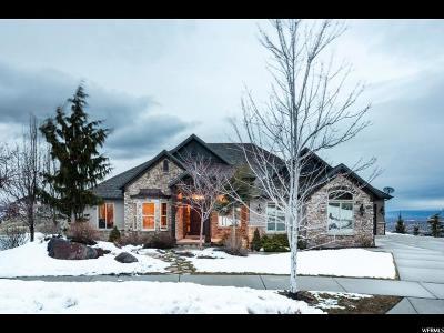 Draper Single Family Home For Sale: 14668 S Falkridge Ct