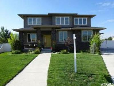 Draper Single Family Home For Sale: 198 Rada Ln