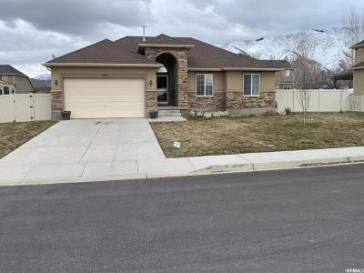 Santaquin Single Family Home For Sale: 766 N 420 W