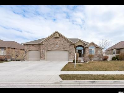 Utah County Single Family Home For Sale: 3262 N Alpine Vista Way