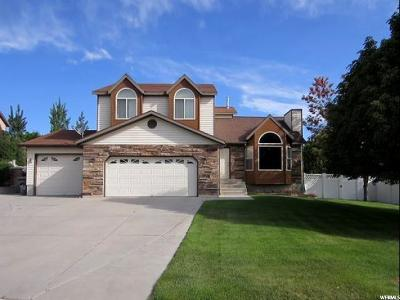 Price UT Single Family Home For Sale: $245,000