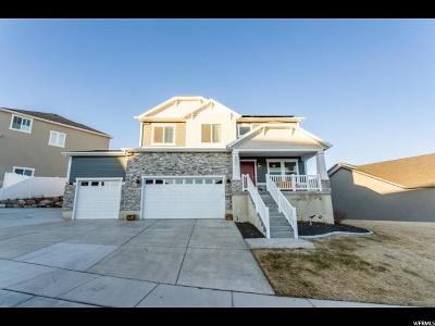 Utah County Single Family Home For Sale: 882 W Spring Dew Ln
