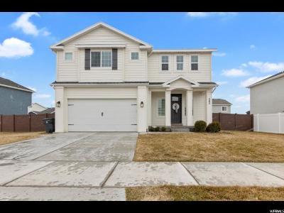 Vineyard Single Family Home For Sale: 282 E 370 N