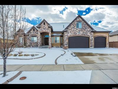 West Jordan Single Family Home For Sale: 1037 W Trimble Creek Dr