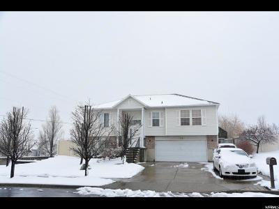 Sandy Single Family Home For Sale: 11384 S Abbottsford Ln