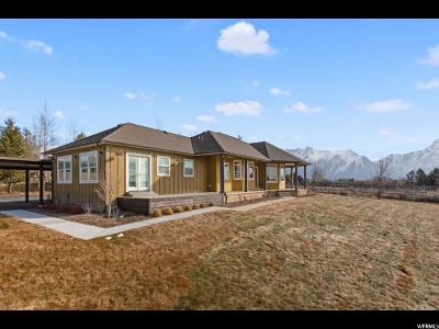 Single Family Home For Sale: 11148 N Sunflower Dr