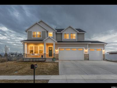 Salt Lake County Single Family Home For Sale: 2769 W Hayden Ridge Way
